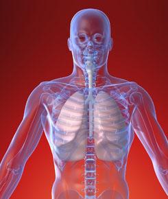 1f9e5de1aa Felső légúti fertőzések: tünetek és kezelés