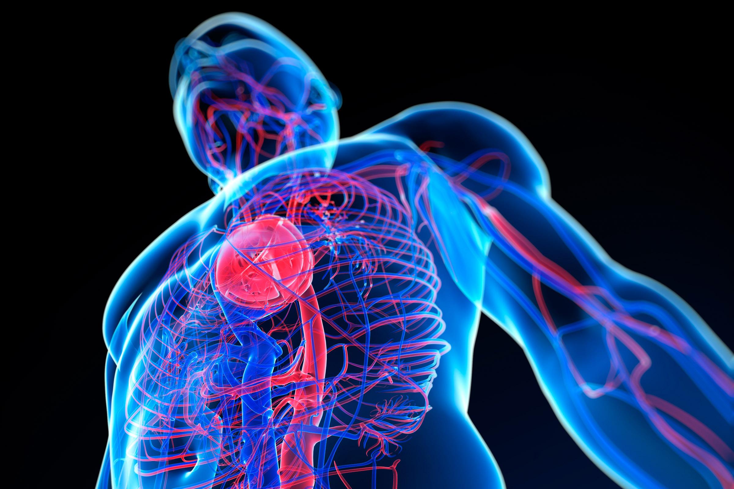 Így pusztítja a stressz a szívet
