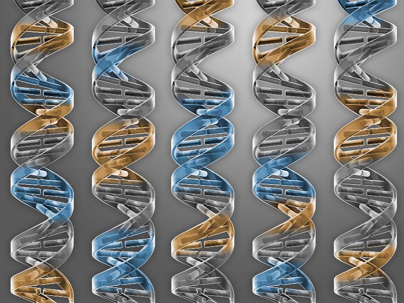Nem a tervezett babákra, de szabad jelzés emberi génsebészetnek