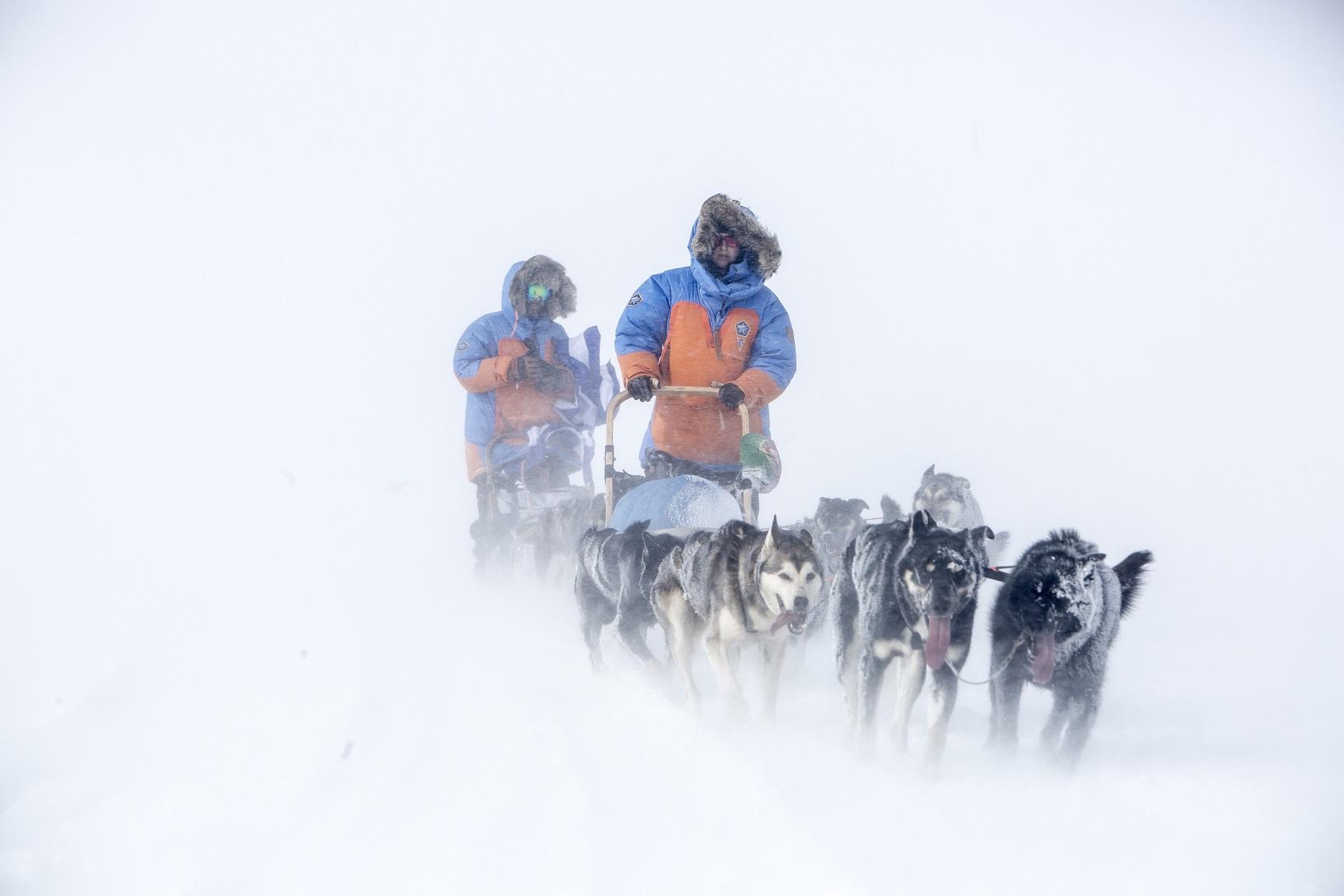 Két magyar is nekivágott a fagyos kutyaszános túrának