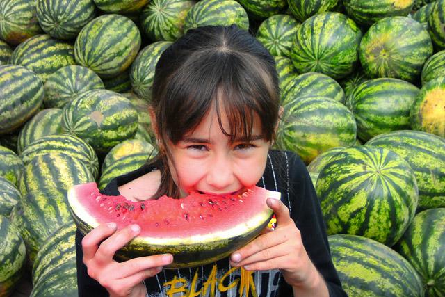 görögdinnye és joghurt étrend
