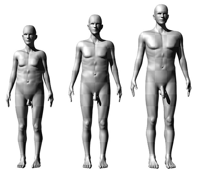 A legtöbb pénisz mérete nőnek