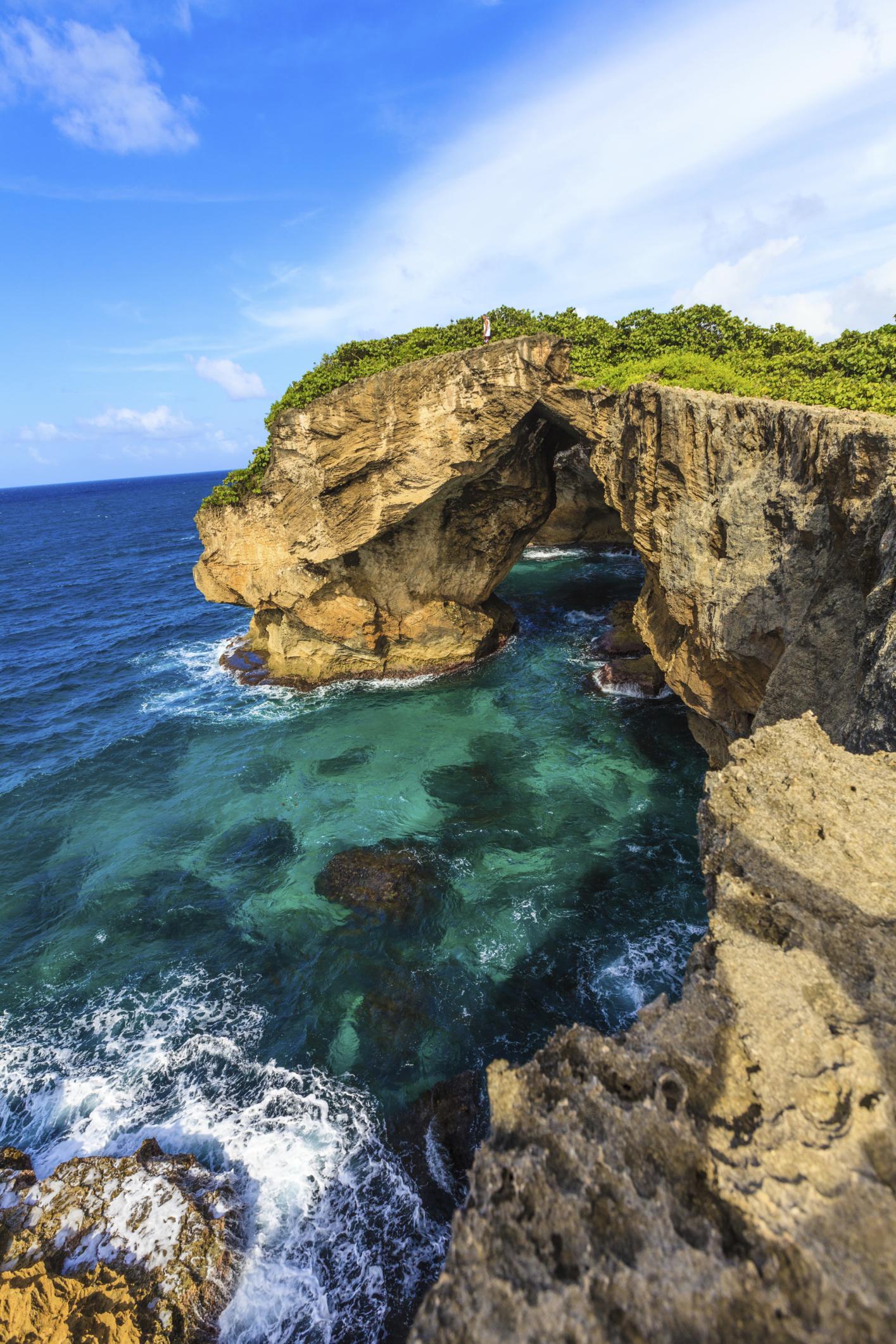 Puerto rican randi kultúra