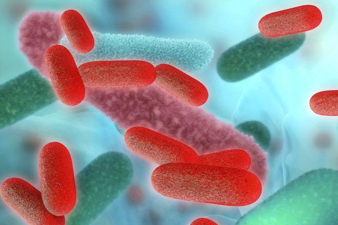 jó és rossz baktériumok