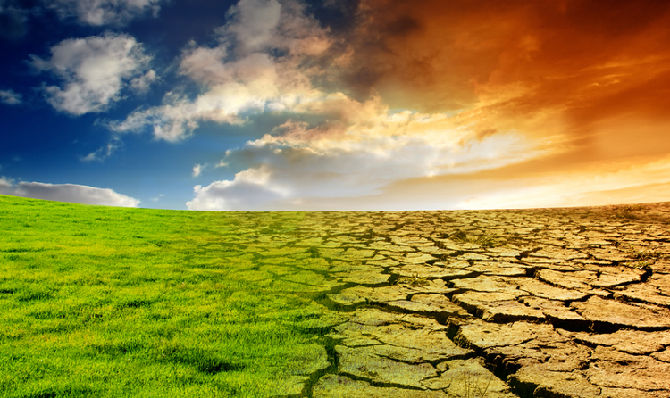 Fajkihalásra és klímaválságra figyelmeztetnek a világ vezető kutatói