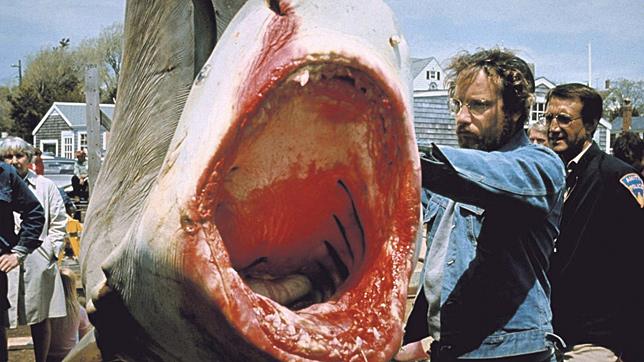 milyen nagy egy cápa pénisz