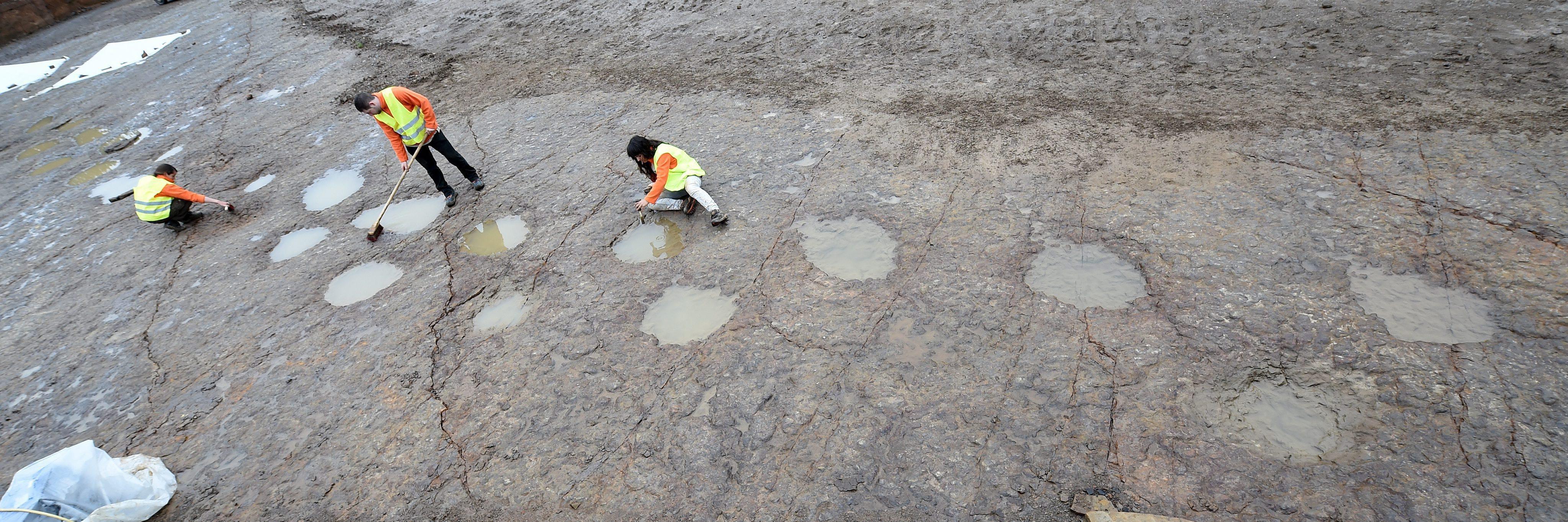 dinoszaurusz csont randi