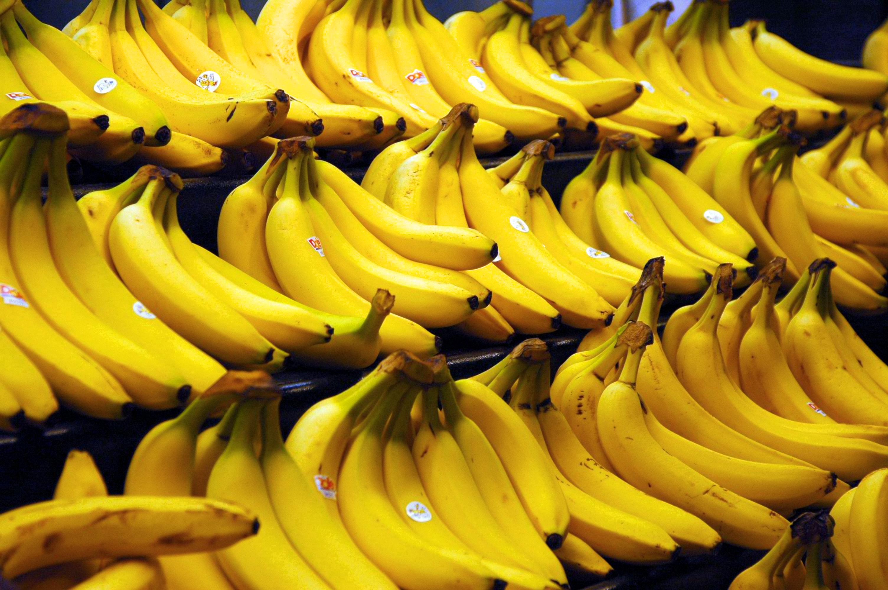 Héja banán látásra