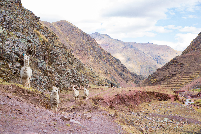 Lassan elfogy a perui szivárványszínű hegy a turisták lába alatt aa7d6adcf8