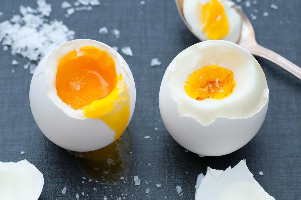 hány tojást rak egy féreg papilloma vírus terhes nőnél