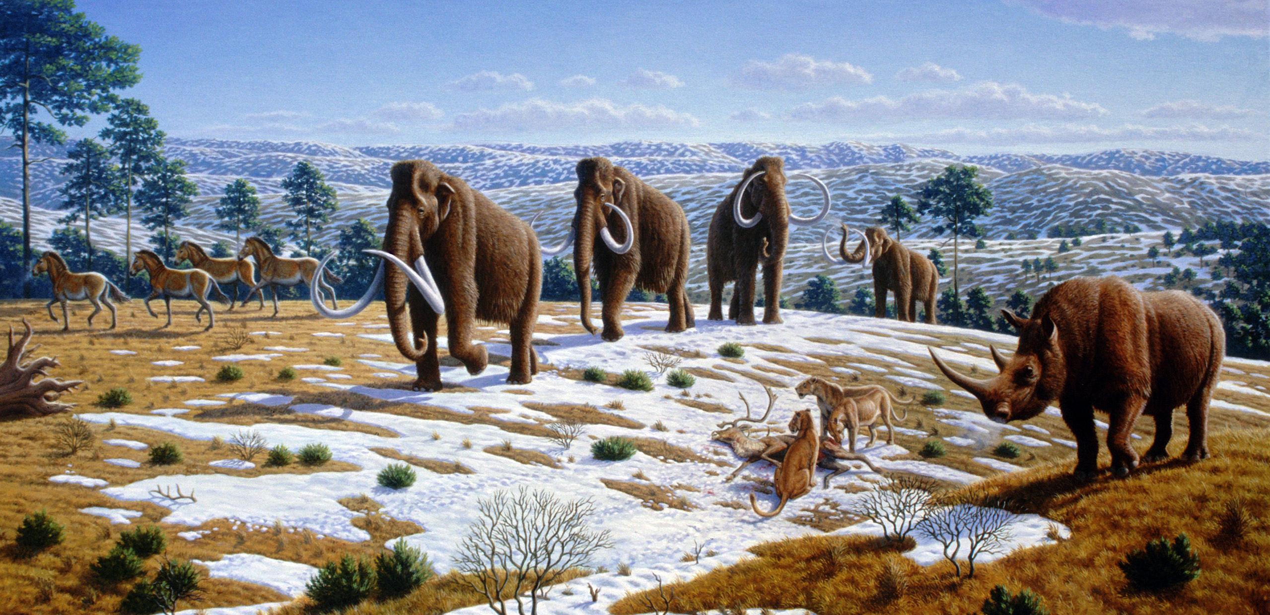 Az utolsó jégkorszak őshőmérsékleti és csapadékviszonyait vizsgálták