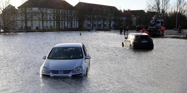 Forrás: dpa Picture-Alliance/AFP/Bernd Wustneck