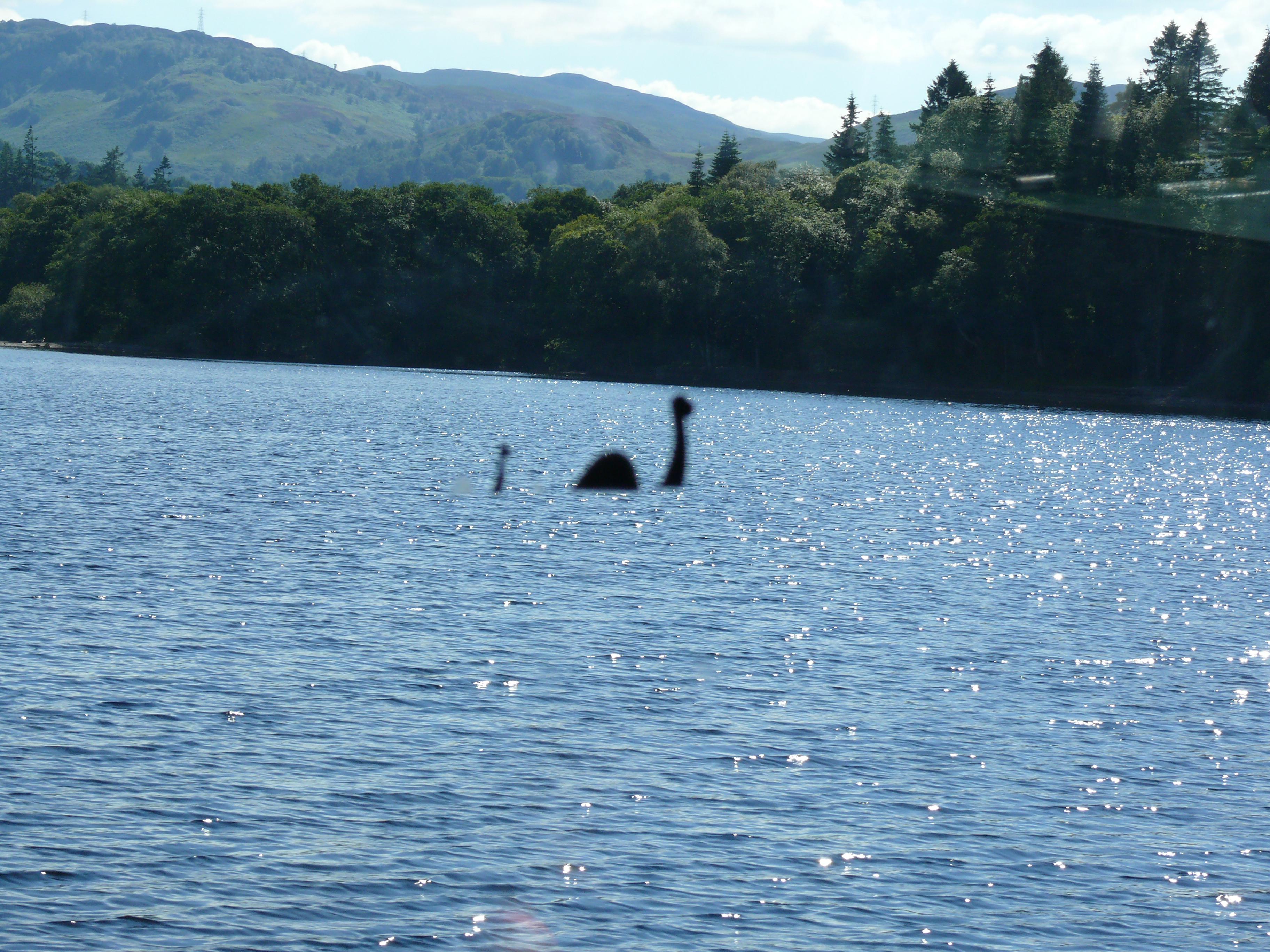 Még sok más hal Írország randi