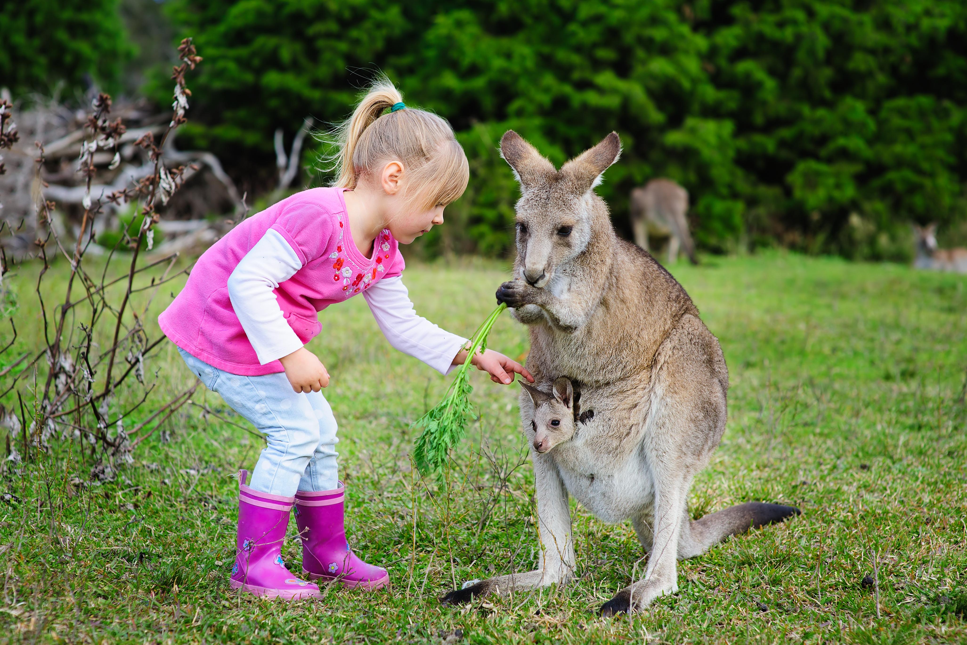Ausztrál egyedülálló szülő