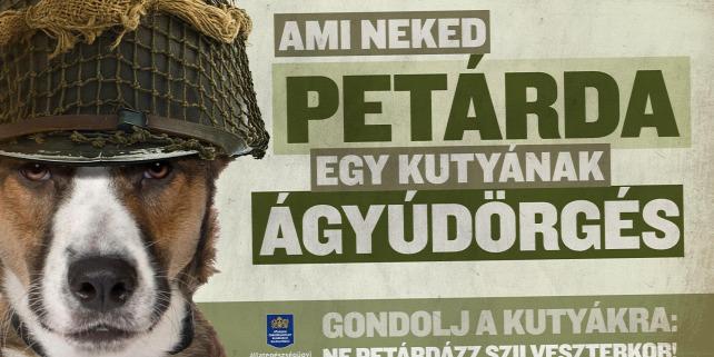 Forrás: http://www.kozterulet-felugyelet.hu/petarda