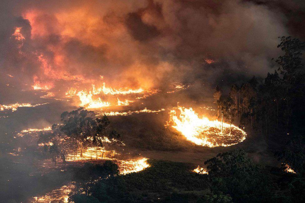 Az Ausztráliában tomboló bozóttüzek a klímaváltozás fő mozgatói
