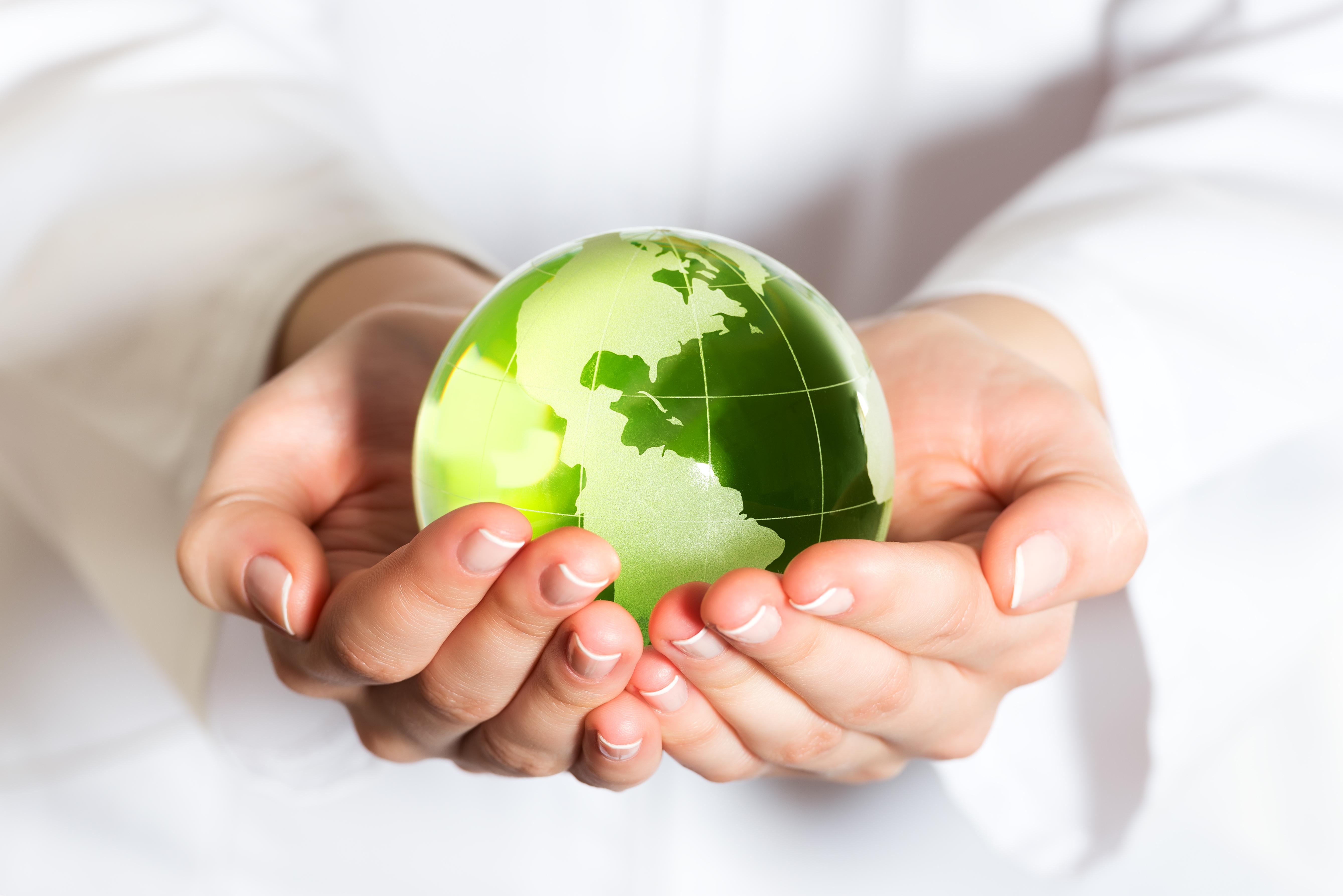 A felelős környezetpolitika fundamentumai a helyi értékek
