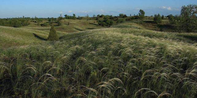 Forrás: Kiskunsági Nemzeti Park