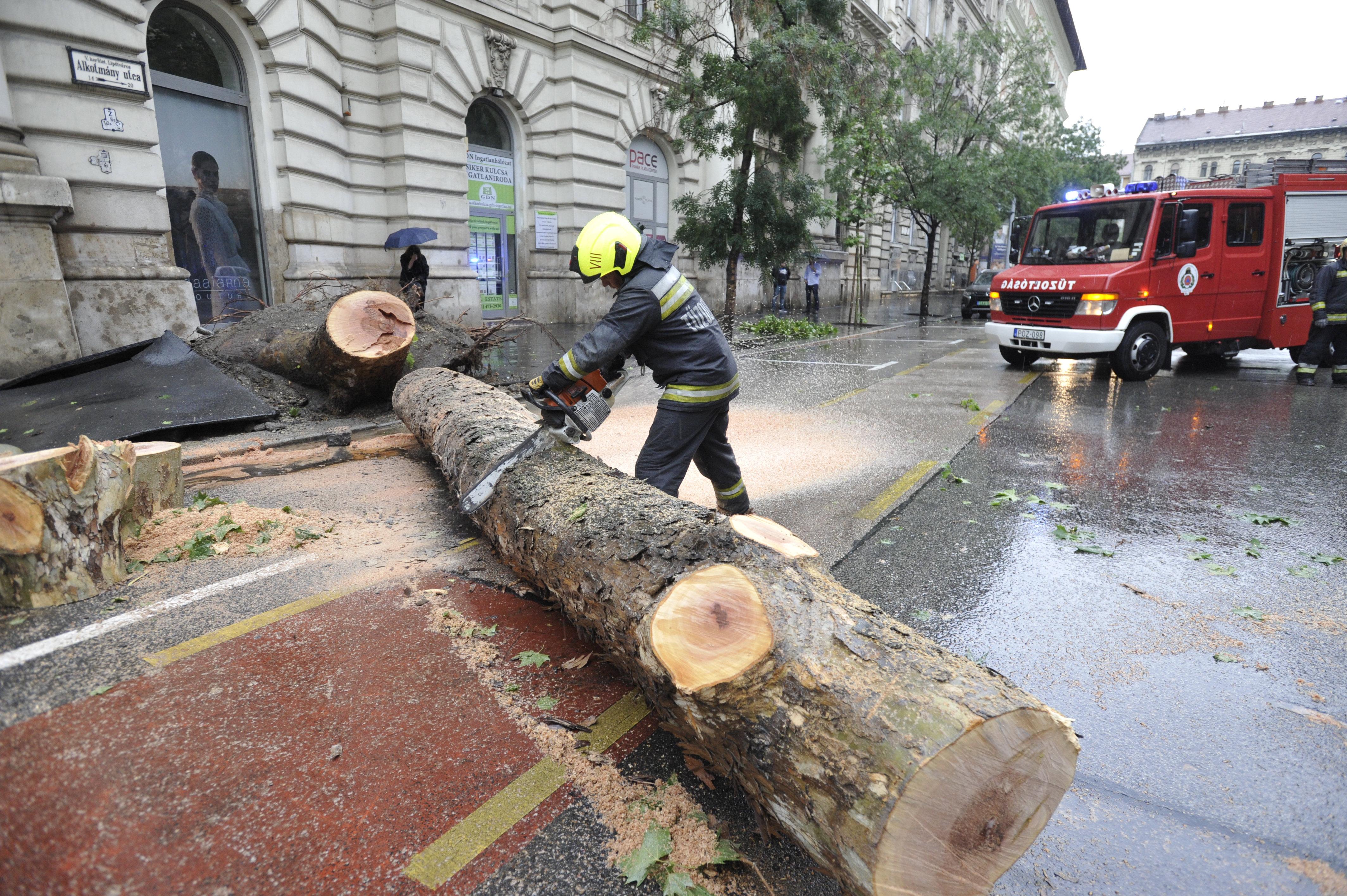 Már több mint 500 esethez riasztották a tűzoltókat