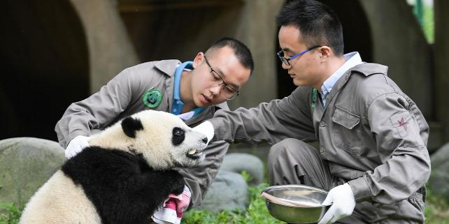 Forrás: XINHUA via AFP/Xinhua News Agency/Xue Yubin