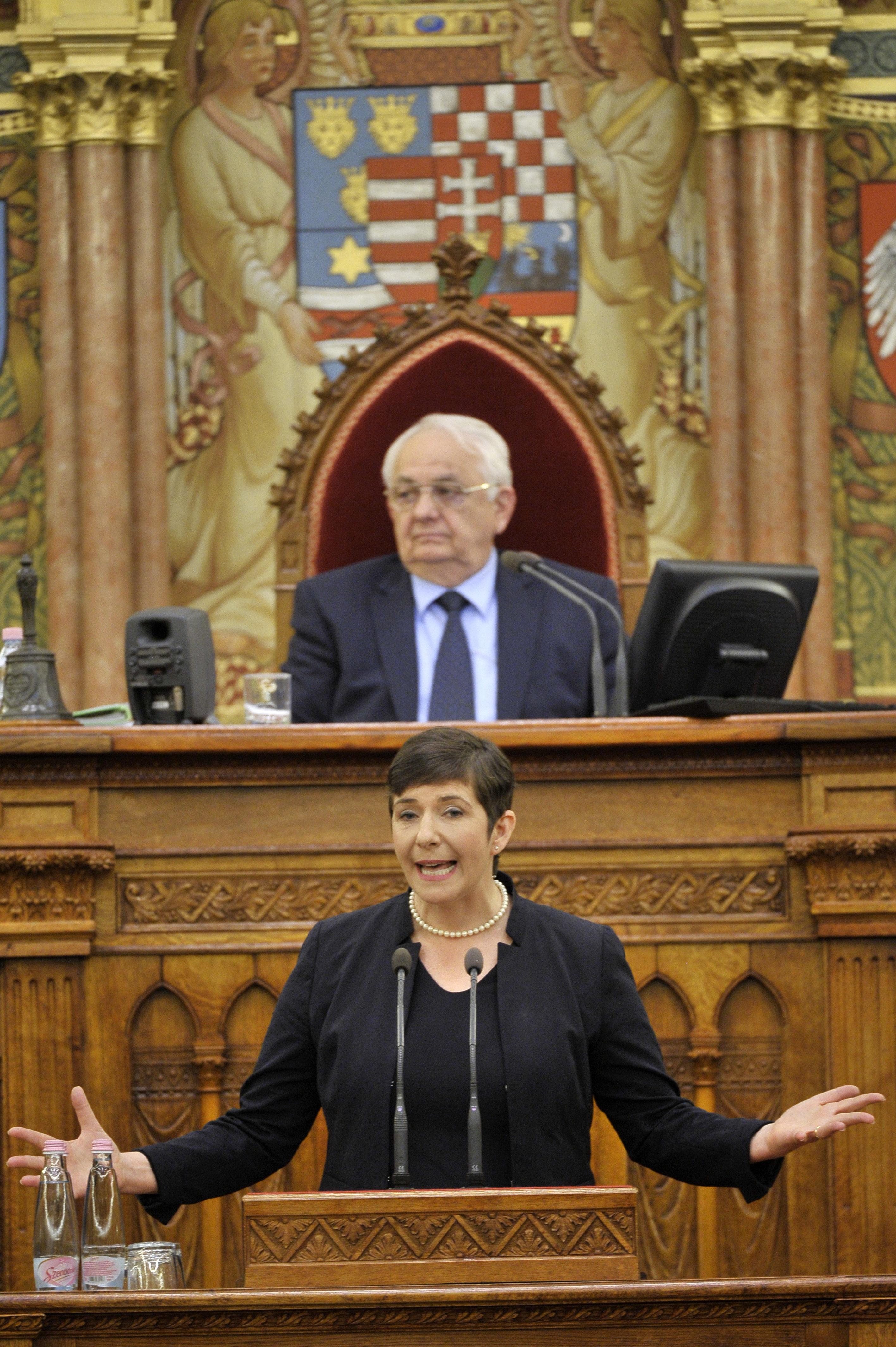 A Momentum brüsszeli főnöke Gyurcsánynéval támadná Magyarországot