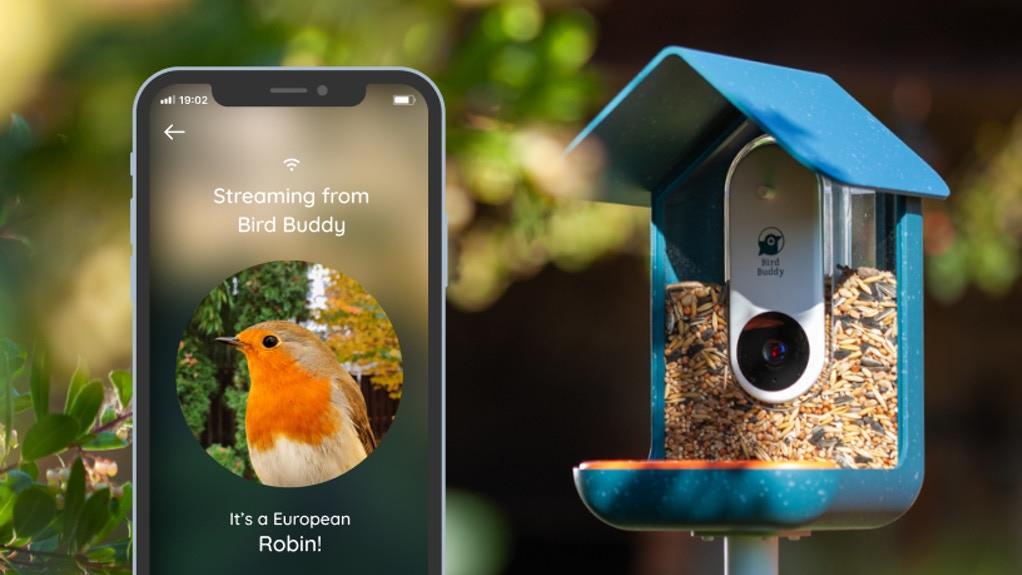 Mesterséges intelligenciával látták el az okos-madáretetőt