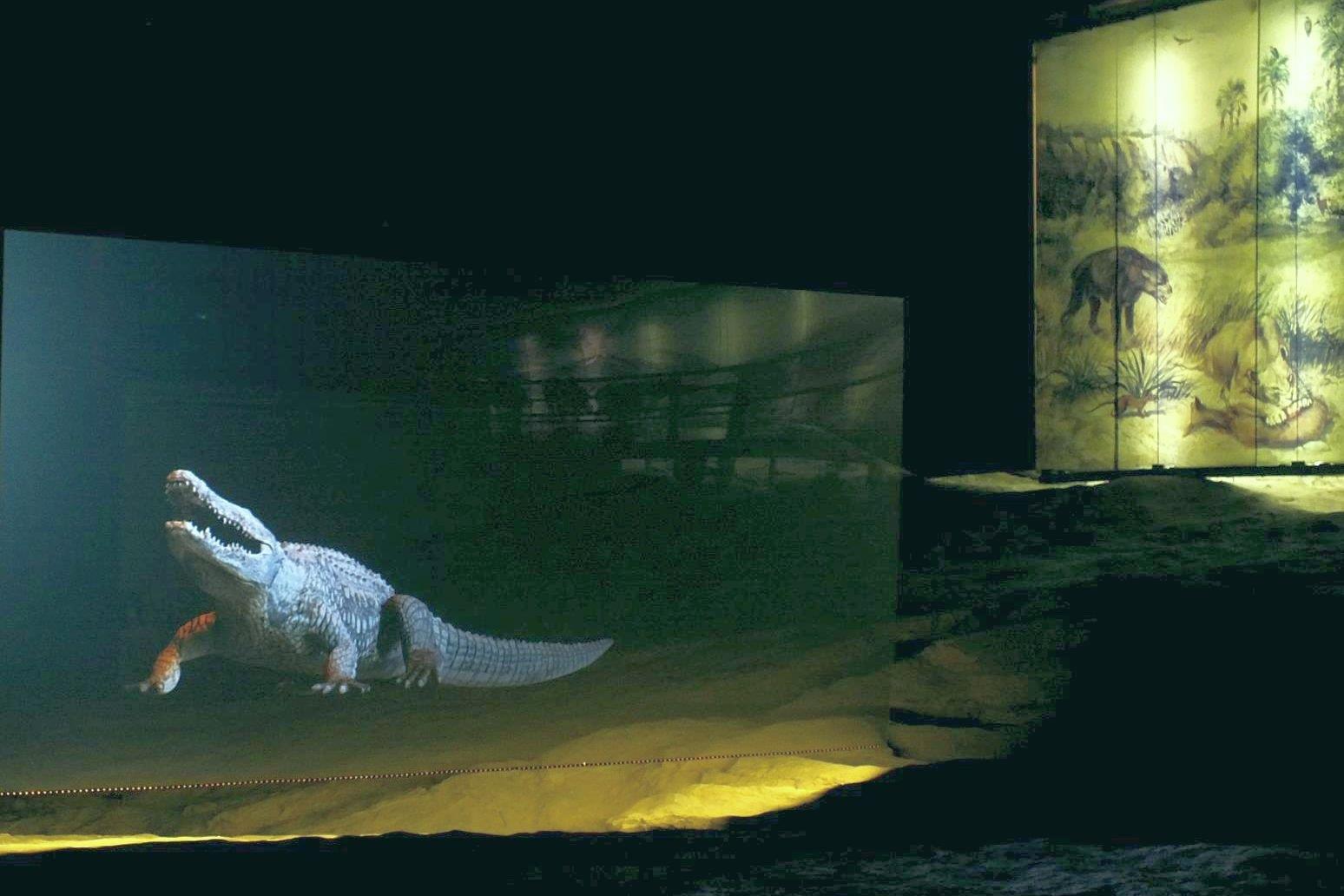 Hazánkban mérik fel az Ősvilági Pompeji világhírű nyomfosszíliáit