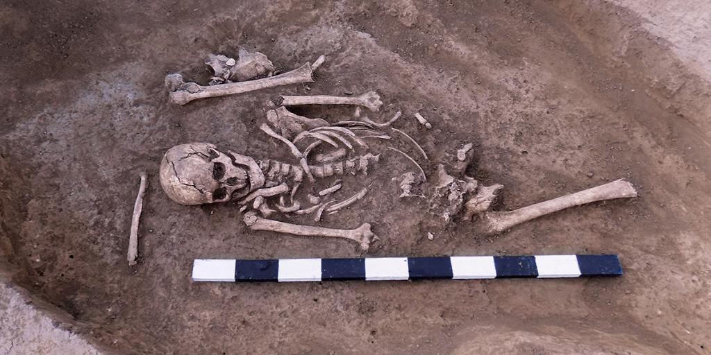 Emberi csontvázat rejtegetett a kertjében egy nő