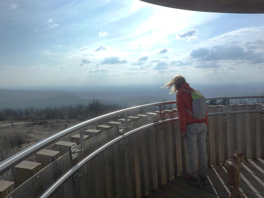 Páratlan panoráma fogadott minket a Pilis tetején