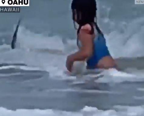 """""""A lelkem elhagyta a testemet"""" - mondta a kislány, aki cápát látott"""