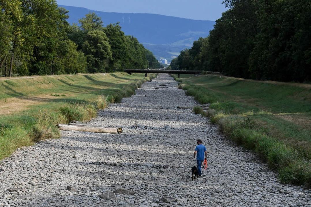 Csökken a víz mennyisége a hazai patakokban