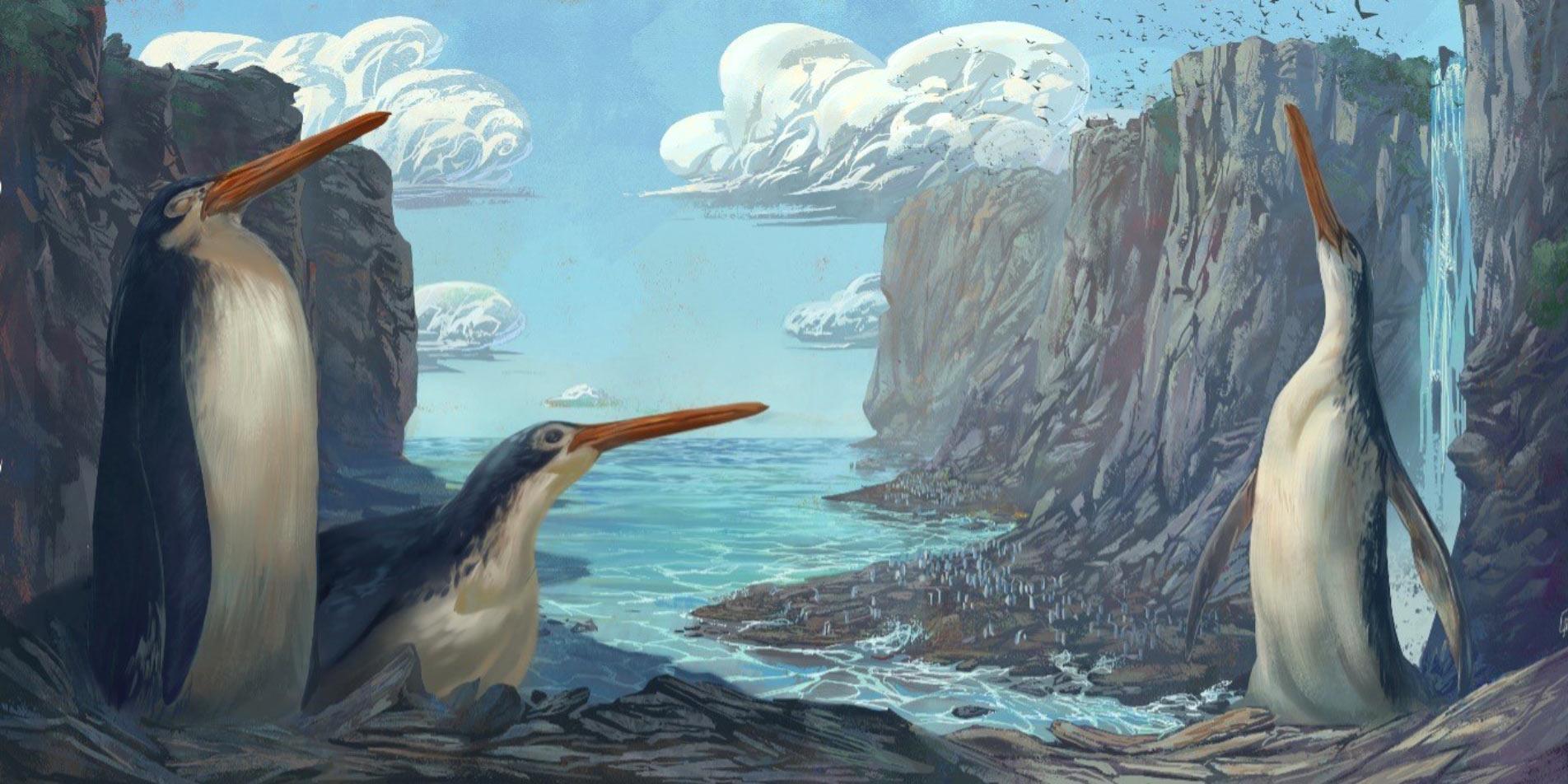 Gyerekek fedeztek fel egy kihalt óriáspingvint