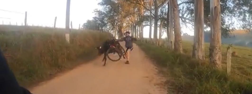 Egy bika támadt rá a kerékpárosokra - videó