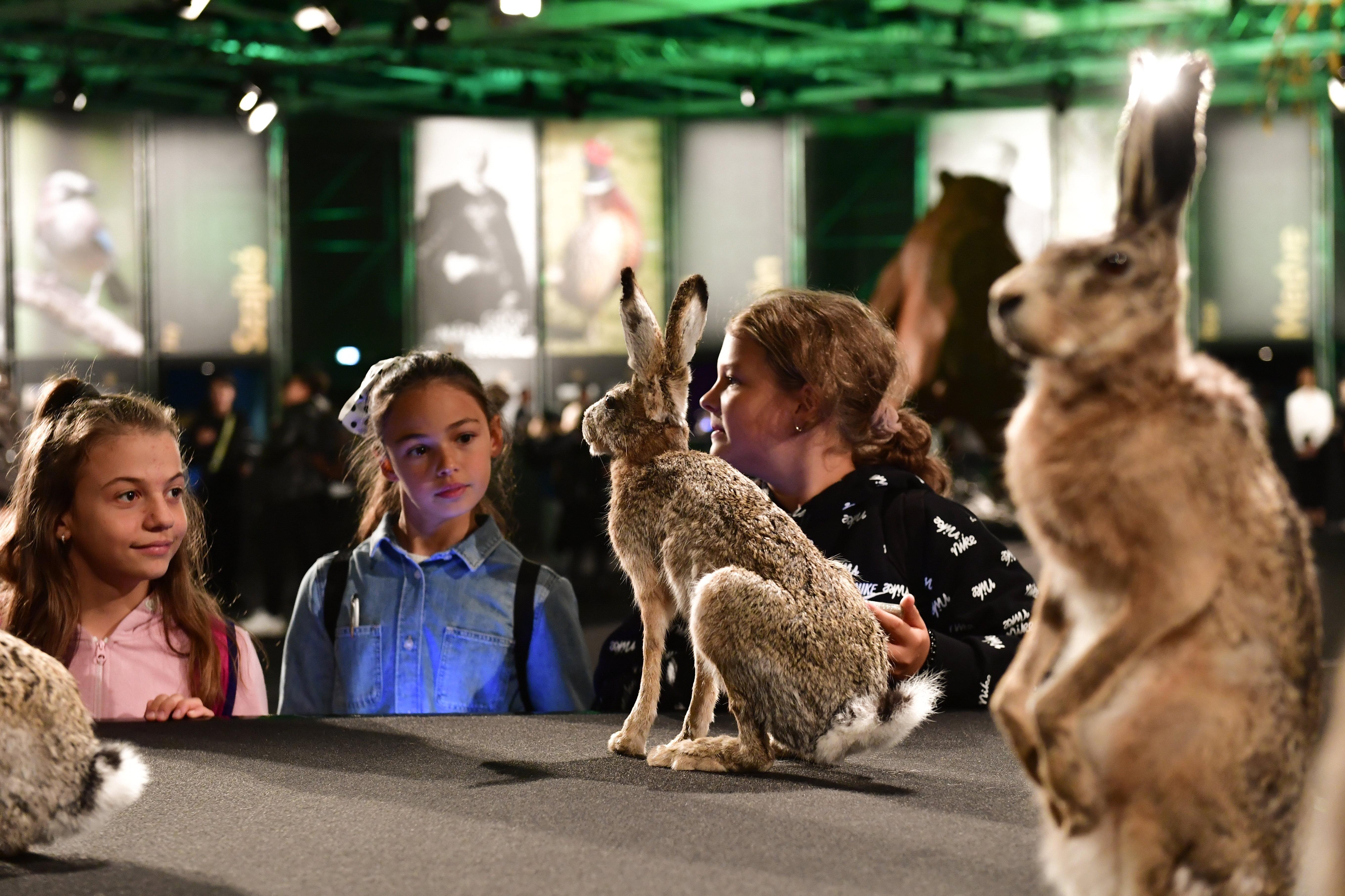 A világkiállítás tizenharmadik napján elindul az OMÉK, hazánk legnagyobb mezőgazdasági kiállítása